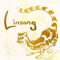 L is for Linsang by greenteaceremony