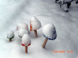 Snow Mushrooms by Lily-Hith-Silme