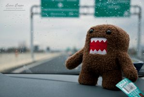 Domo's Holiday by MetallerLucy
