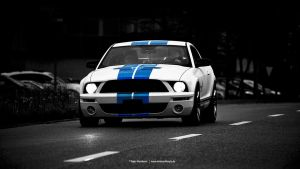 GT 500 by AmericanMuscle