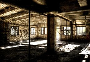 The Cages by Beezqp