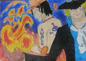 Ace and Sabo by Tory-Rug1728