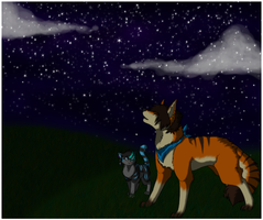 .Stargazing. by TangleClaw