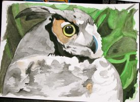 Great Horned Owl - Watercolour by Inquisitive-Soul