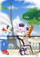 SilverxBlaze in Paris by DreamingClover