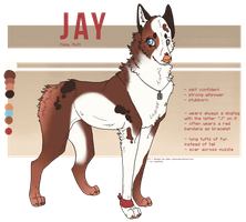 Character For Sale - Jay [CLOSED] by anouki-morgenstern