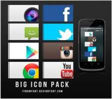 Big Icon Pack by findmyart