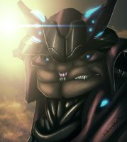 The Sangheili Pirate by Ghostwalker2061