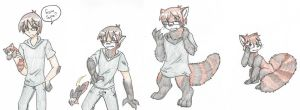 Redpanda transformation~ by RaiinbowRaven