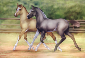 Inphy and Aspharr by feverpaint