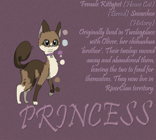 [Reference] Princess by nooks-crannies