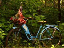 Blue Bike With Basket by PamplemousseCeil