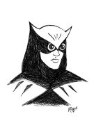 Nite Owl by RichBernatovech