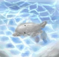Dolphin by Moonseed