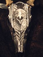 inside universe eagle feather by angryhands