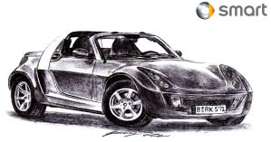 1 hour Smart Roadster Quick Precision by toyonda