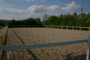 Riding Arena Equestrian Stock by LuDa-Stock