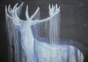 Ghost Stag by RoisinArt