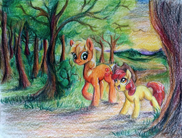 Apples in the woods by ButterSprinkle