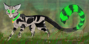 Pepsi the swamp cat by Gleadless