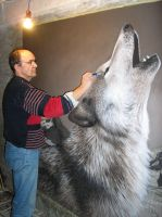 wolf in making by skillman