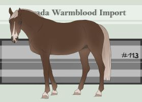 Nevada Warmblood 113 by BRls-love-is-MY-Live