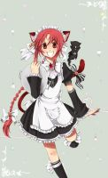 AoH - Nekomimi Maid by LonelyKnight