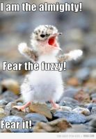 Fear the almighty Fuzzy! by mamapopo1