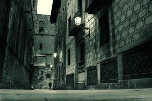 Barcelona - Barri Gotic by kaneda99
