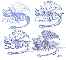 Progession Toothless and Hiccup by joeywaii