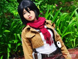 Mikasa Ackerman: Stand and fight by kuricurry