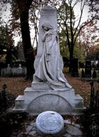 The Beauty by Jotpeh