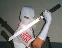 Storm Shadow by Spiderion