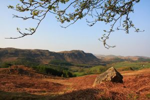 Eskdale Morning by scotto