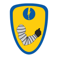 1st Regulan Hussars Insignia by Viereth