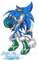 Gift: Kaito the Hedgehog by SupaSilver
