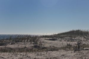 Beyond the dunes by Laur720