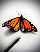 Tattoo Design | Monarch Butterfly by badfish1111