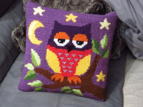 Chouette coussin by Santian69
