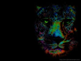Grunge leopard wallpapers by Artculpit