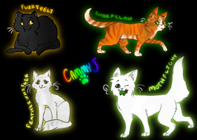 Random Warrior Cats by chameleocoonJ