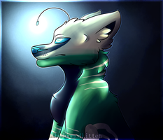 Lost in space [gift] by thedoomedkitteh