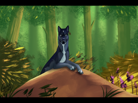 Jungle Stories by InstantCoyote