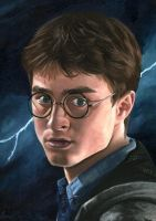 Harry Potter Oil Painting by Correlation