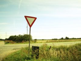 Road Sign by Superbiaa