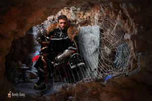 Robert the Bruce and the Spider by Rowdy-Dawg