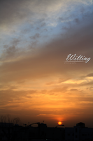 The Sunset . . by W-ilting
