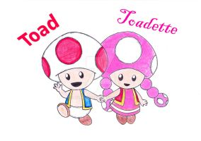 Toad and Toadette by ZaneNya