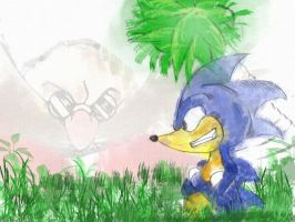sonic by Arkha13