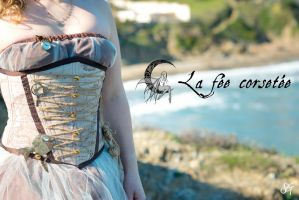 Corset pirate by La Fee Corsetee, France by michaeljack